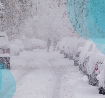several cars covered by snow